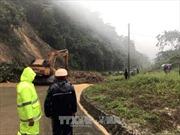Quảng Nam: Tăng cường nhân lực, trang thiết bị tìm kiếm nạn nhân bị vui lấp do sạt lở núi