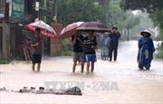 Quảng Bình đến Quảng Ngãi vẫn mưa to, nguy cơ xảy ra lũ quét kèm sạt lở đất