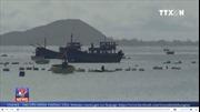 'Thủ phủ' nuôi tôm hùm của Phú Yên thiệt hại nặng do bão
