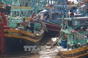 Các tỉnh từ Quảng Ninh đến Kiên Giang cần chủ động đối phó với vùng áp thấp