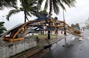 Khẩn trương khắc phục hậu quả của bão số 12