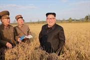 Hàn Quốc đánh giá Triều Tiên phản ứng 'chừng mực' khi Tổng thống Mỹ đến Seoul