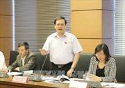 Quốc hội cho ý kiến về dự án Luật Bảo vệ bí mật Nhà nước và dự án Luật An ninh mạng