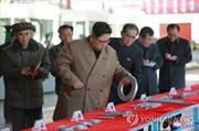 Tạm ngừng thử tên lửa, ông Kim Jong-un chuyển sang máy kéo