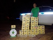 Taxi Mai Linh vận chuyển 81kg pháo lậu