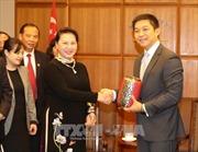 Chủ tịch Quốc hội Nguyễn Thị Kim Ngân hội đàm với Chủ tịch Quốc hội Singapore