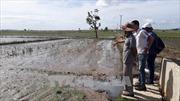 Gia Lai: Nhà máy tinh bột sắn xả thải gây ô nhiễm môi trường