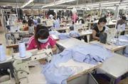 Kim ngạch xuất khẩu dệt may đạt 31 tỷ USD