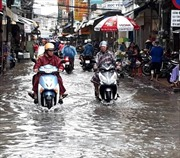 Mưa lớn kết hợp triều cường, người dân Bạc Liêu 'bì bõm' trên phố