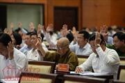 HĐND TP Hồ Chí Minh thông qua các chính sách hỗ trợ cho cán bộ không chuyên