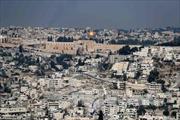 Tổng thống Trump và Jerusalem - Cú 'chọc gậy tổ ong' nguy hiểm