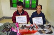 Phối hợp trấn áp tội phạm ma túy trên tuyến biên giới Việt - Trung
