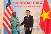 Phó Thủ tướng Phạm Bình Minh hội đàm với Bộ trưởng Ngoại giao Liberia