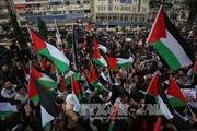 Người dân Palestine xuống đường phản đối kế hoạch di chuyển Đại sứ quán Mỹ tới Jerusalem