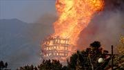 Cháy ngùn ngụt, tòa tháp gỗ cao nhất châu Á thành đống tro tàn