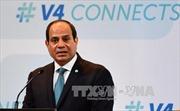 Ai Cập và Nga ký kết thỏa thuận xây dựng nhà máy điện hạt nhân đầu tiên của Ai Cập