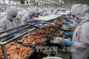 ADB dự báo tăng trưởng kinh tế Việt Nam năm 2017 - 2018 là 6,7%