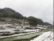 Phòng tránh rét cho học sinh trên Cao nguyên đá Đồng Văn