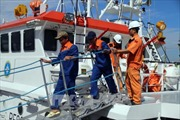 Cứu 15 ngư dân tàu cá bị nạn trên biển Bà Rịa-Vũng Tàu