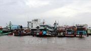 Ngư dân không chủ quan với thời tiết sau bão