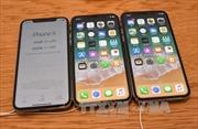 Apple bị điều tra hành vi giảm hiệu năng iPhone đời cũ