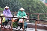 Hà Nội rét đậm, người lao động tê cóng trong mưa lạnh
