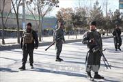 Lực lượng an ninh Afghanistan tăng cường tấn công Taliban vào mùa Đông