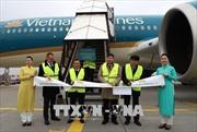 Vietnam Airlines đẩy mạnh khai thác đường bay thẳng Việt Nam - Đức