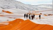 Ngắm sa mạc đỏ Sahara phủ trắng tuyết