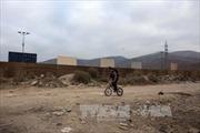 Mexico tái khẳng định không thanh toán chi phí bức tường biên giới với Mỹ