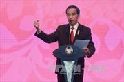 Indonesia cải tổ nội các