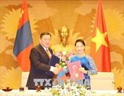 Chủ tịch Quốc hội Nguyễn Thị Kim Ngân hội đàm với Chủ tịch Quốc hội Mông Cổ