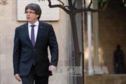 Đức bắt giữ cựu Thủ hiến vùng Catalonia Carles Puigdemont