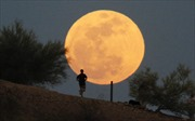 Ngày 31/1, siêu trăng, trăng máu và trăng xanh cùng xuất hiện