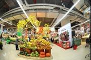 Vinmart hỗ trợ địa điểm bán hoa- cây cảnh Tết