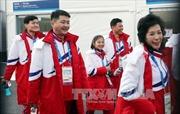Olympic PyeongChang: Các VĐV Triều Tiên không được hưởng đặc quyền