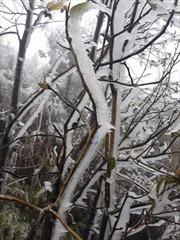 Thời tiết ngày 6/2: Bắc Bộ tiếp tục rét đậm, rét hại, Sa Pa lạnh 0,3 độ C