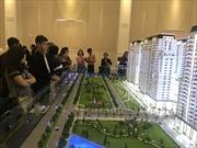 Dream Home Riverside căn hộ ven sông hấp dẫn khách hàng
