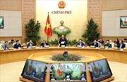 Phiên họp Chính phủ: Quyết liệt hành động, tạo chuyển biến mạnh mẽ trên các lĩnh vực