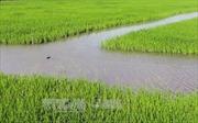 Chuyển mục đích sử dụng đất tại Ninh Bình, Quảng Bình