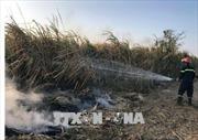 Vụ cháy cánh đồng mía ở Kon Tum: Sẽ thu mua mía cho dân ngay sau Tết