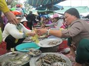 Độc đáo những phiên chợ quê chỉ họp trong ngày Tết