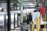 Đức phản đối kế hoạch của Mỹ tăng thuế nhập khẩu thép