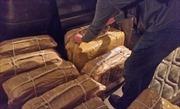 Phát hiện hàng trăm kg cocaine tại Đại sứ quán Nga
