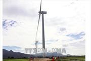 Mỹ An là một trong những vùng có tiềm năng về điện gió tại Bình Định