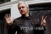 Anh và Ecuador chưa thể thỏa thuận để giải phóng cho nhà sáng lập WikiLeaks