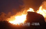 Xưởng chế biến gỗ cháy rụi nghi do chập điện