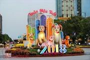 Đường hoa Tết 2018 thu hút hơn 1 triệu khách tham quan