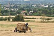Tổng thống Pháp quyết ngăn Trung Quốc mua đất nông nghiệp ồ ạt