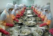 Australia tới Việt Nam kiểm tra về chuỗi sản xuất tôm xuất khẩu